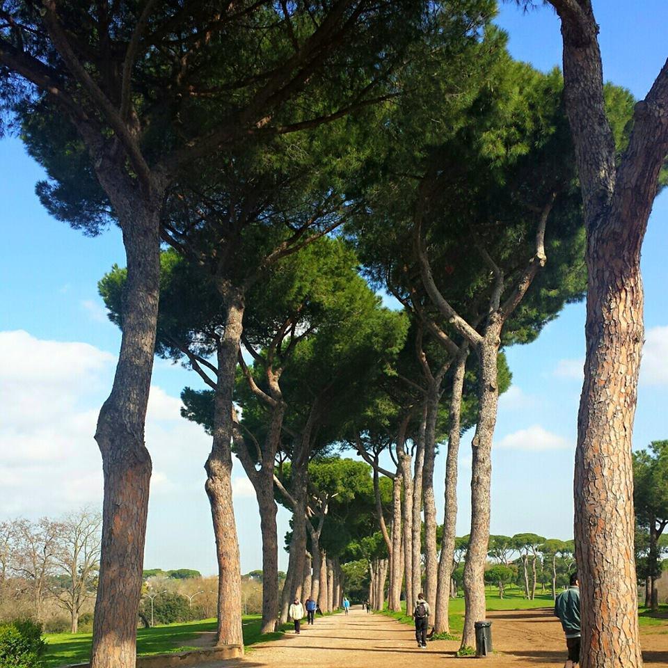 Melhor epoca para visitar Roma - Outono - Blog Vou pra Roma