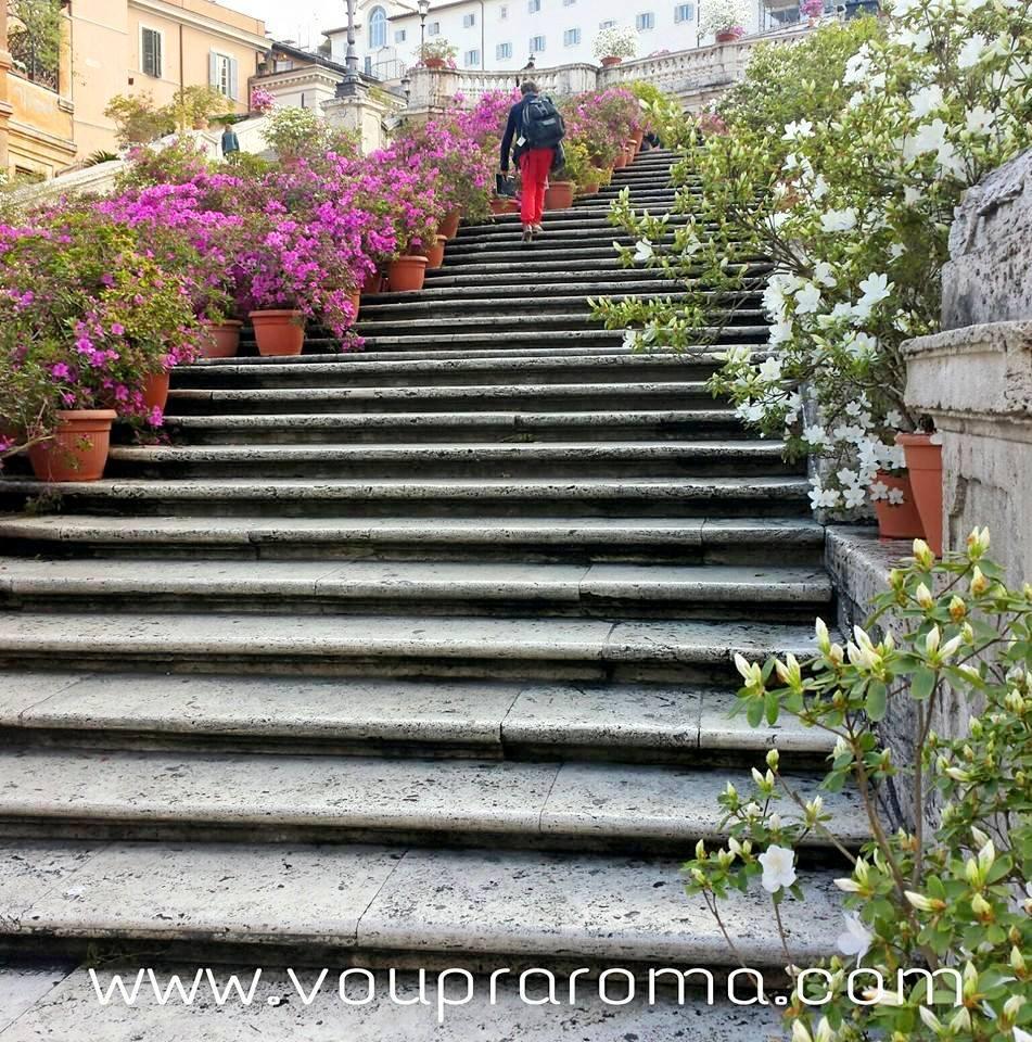 Piazza di Spagna - flores na Escadaria Trinità dei Monti - Blog VoupraRoma