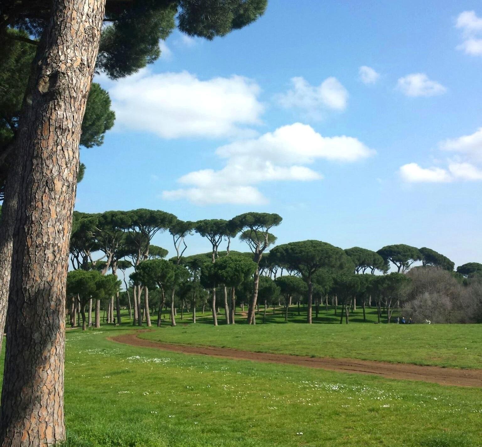 Primavera em Roma - Villa Pamphili