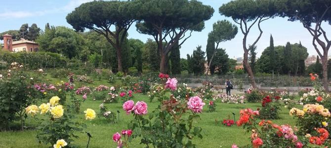 Roma para quem gosta de flores.