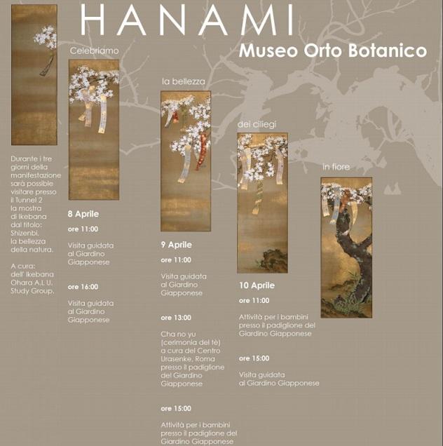 hanami - Jardim Botânico Roma - Jardim japonês