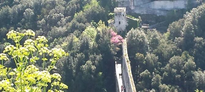 Bate e volta de Roma a Spoleto – Umbria.