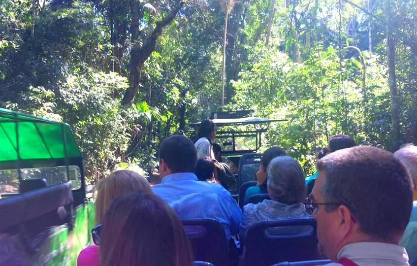 Passeio Macuco Safári nas Cataratas do Iguaçu Brasil - Blog VoupraRoma