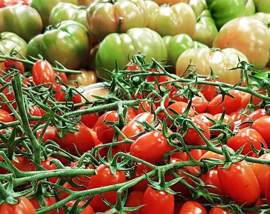 Tomates no Mercado -Roma - Blog VoupraRoma