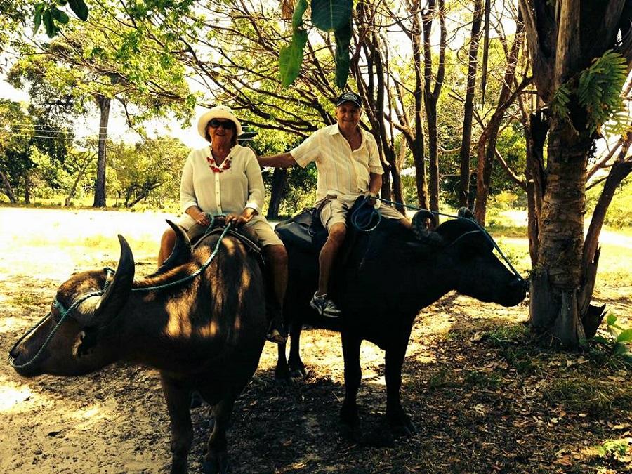 Tour com Búfalos - Blog VoupraRoma